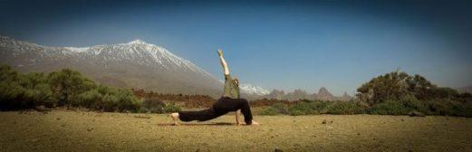 Anukalana twist yoga