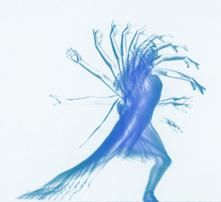 anukalana-yoga-movimento