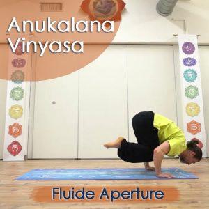 Anukalana Vinyasa: Fluide aperture