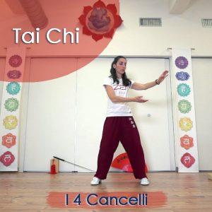 Tai Chi: I 4 Cancelli