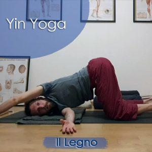 Yin Yoga: Il Legno