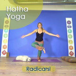 Hatha Yoga: Radicarsi