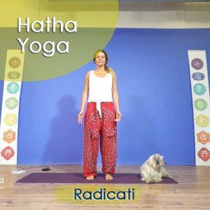 Hatha Yoga: Radicati