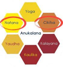 ritiro anukalana yoga meditazione